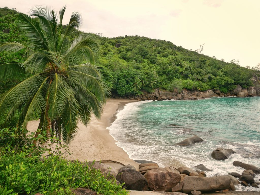 Anse major seychelles islands